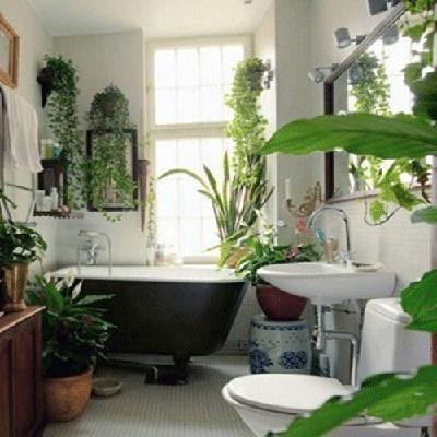 11 bí quyết làm sạch phòng tắm sẽ thay đổi cuộc sống của bạn